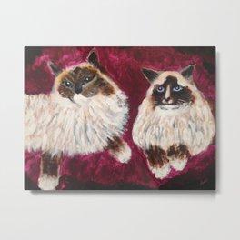 Posing Cats Metal Print