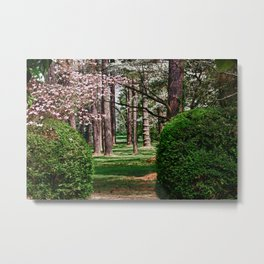 Pathway to the Woods Metal Print