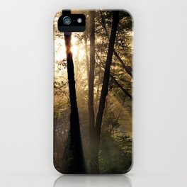 Coastal Forest Light iPhone Case