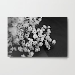 Baby's-breath black and white Metal Print
