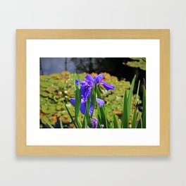 An igniting Attraction I Framed Art Print