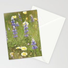 Colors 163 Stationery Cards