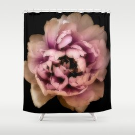 Lush Peony, Nobility And Honour Shower Curtain