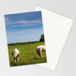 Horses grazing in Ireland Stationery Cards