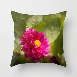 Dark Pink Dahlia in the Garden Throw Pillow