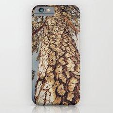 Tree 3 iPhone 6s Slim Case