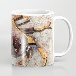 Ocean Shore Crab Coffee Mug