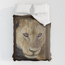 Lion_BrownBoarder Comforters