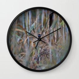 Brown Hare Wall Clock