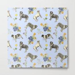 Saint Bernard Dogs & Alpine Flowers - Blue Metal Print