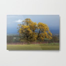 Sunlight before the Storm Metal Print