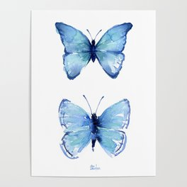Two Blue Butterflies Watercolor Poster