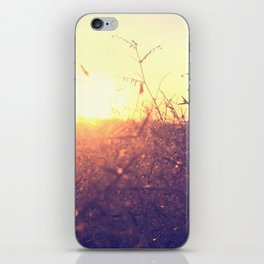 Evening in Summer iPhone Skin