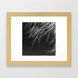 Winter Tree - minimalist white branches on black ground Framed Art Print