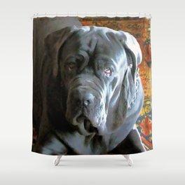My dog Ovelix! Shower Curtain