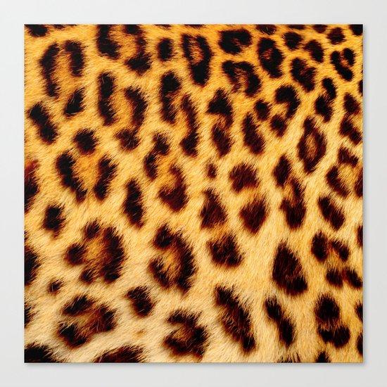 Leopard skin pattern Canvas Print