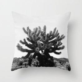 Cholla Cactus Garden XI Throw Pillow