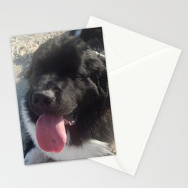 A beach friend Stationery Cards