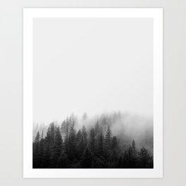 FOREST MIST Art Print