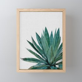 Agave Cactus Framed Mini Art Print