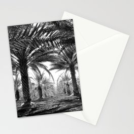 Vintage Palms Trees : Coachela Valley California 1937 Stationery Cards