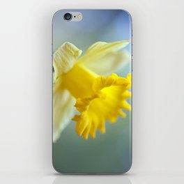 Daffodil 9909  iPhone Skin
