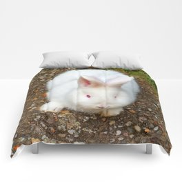 Fluffy white bunny Comforters