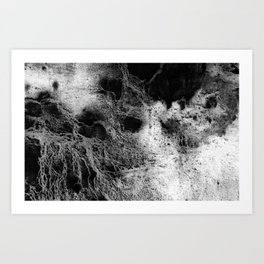 The Teresa / Charcoal + Water Art Print