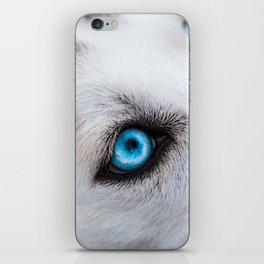 Siberian Husky Eyes (Color) iPhone Skin