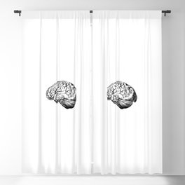 Brain Anatomy Blackout Curtain