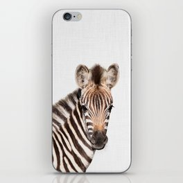 Baby Zebra iPhone Skin