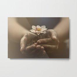 Delicacy/Innocence  Metal Print