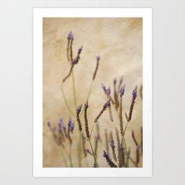 Stick Flowers Art Print