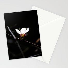 Sakura flowers on black 03 Stationery Cards