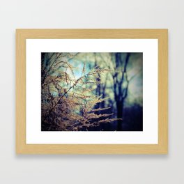 Spirit of Dusk Framed Art Print