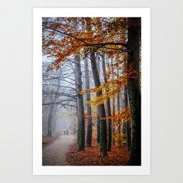The last stroll in November Art Print