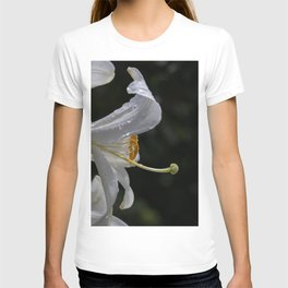 Raindrops on lily flower T-shirt