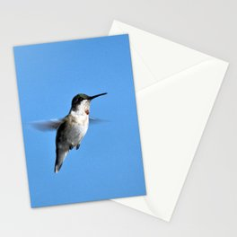 Juvenile Ruby-Throated Hummingbird Stationery Cards