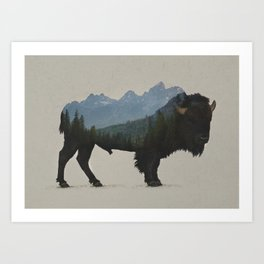 Grand Teton Bison Art Print