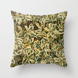 Suburban Jungle Throw Pillow
