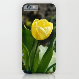 Tulips Photography | Yellow Tulip | Floral Art Print | Botanical | Spring Tulip Art Print iPhone Case