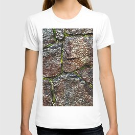 Rock Wall with Moss Abstract T-shirt