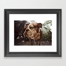 Gus Framed Art Print