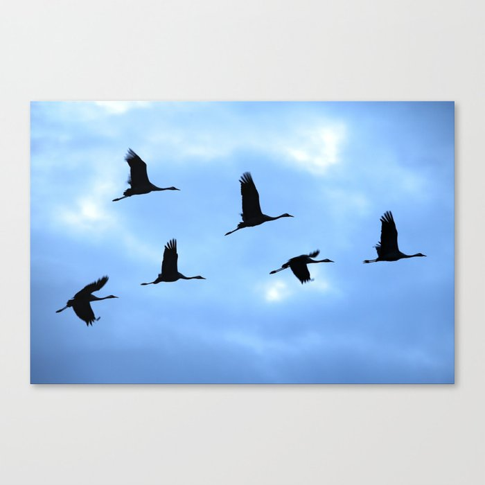 Welcome back! Cranes in flight #decor #society6 Canvas Print