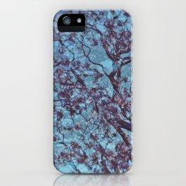 Jacaranda iPhone Case