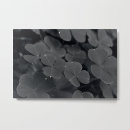 Lucky drops Metal Print