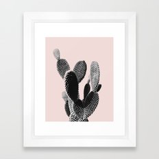 cactus plant in pink Framed Art Print