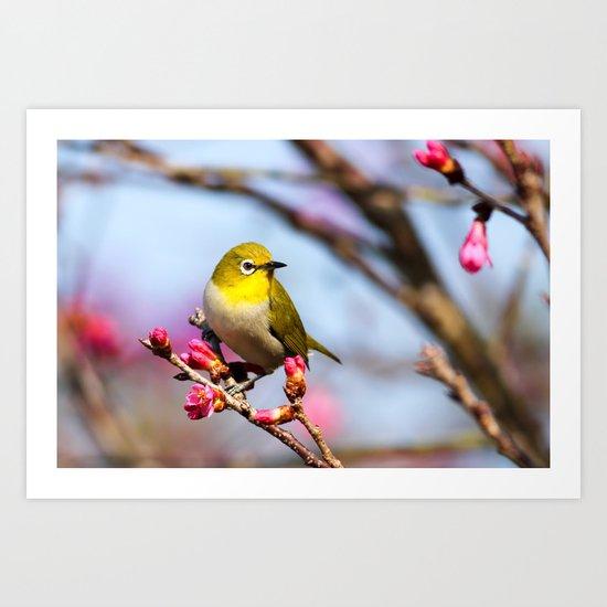 yellow little bird Art Print