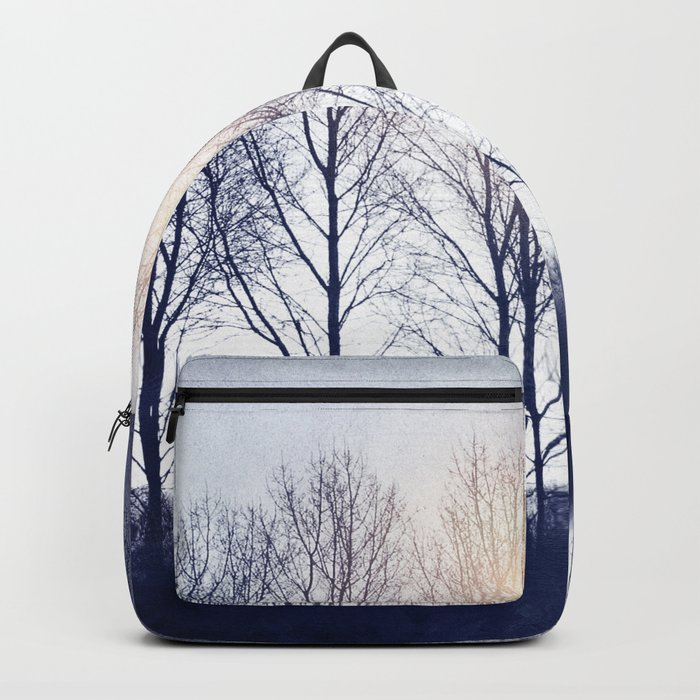 Winter Sequence II Backpack