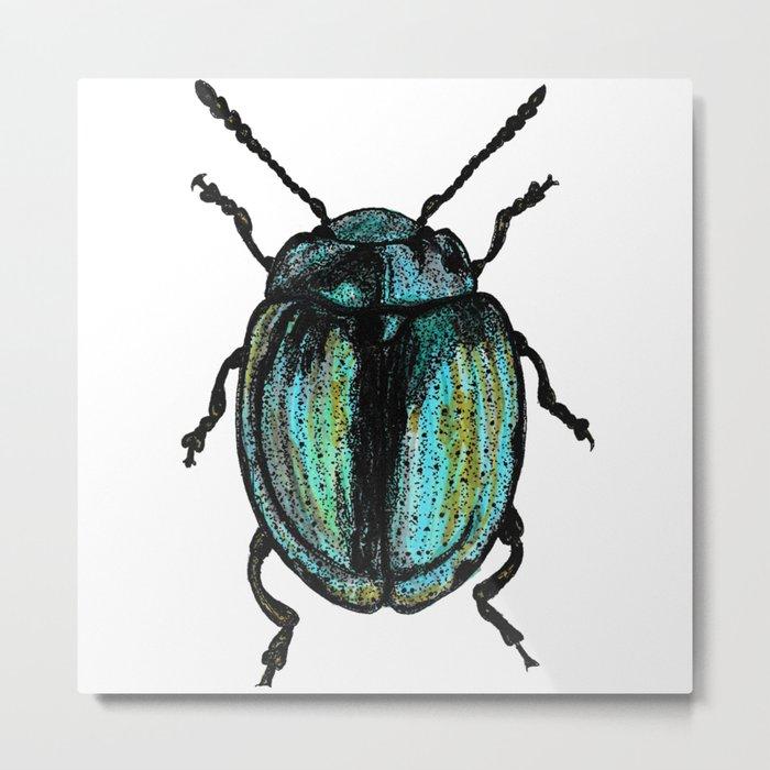 Blue Beetle Metal Print